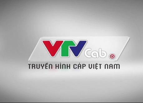 Kéo dài thời gian hoàn thành bán cổ phần lần đầu VTVTcab