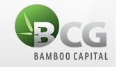 CTCP Bamboo Capital