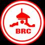 Công ty Cổ phần Cao su Bến Thành (BERUB JSC)