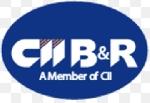 CTCP Đầu Tư Cầu Đường CII