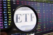 Hai quỹ ETF sẽ hành động ra sao trong kỳ cơ cấu lần này?