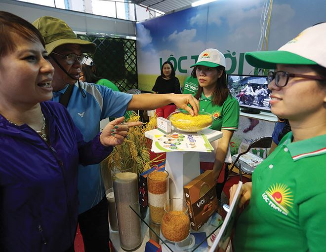 Tập đoàn Lộc Trời: Mảng gạo vẫn lỗ lớn