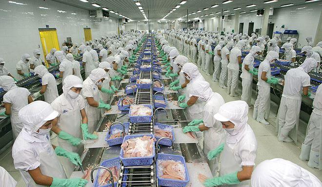 Doanh nghiệp thủy sản dự báo lãi lớn