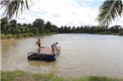 'Điều chỉnh đường bơi' cho cá tra Việt Nam