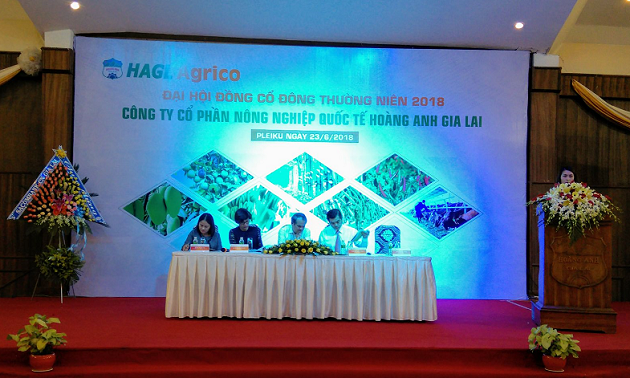 ĐHĐCĐ HNG: Năm 2018, chuối sẽ là mảng chiến lược
