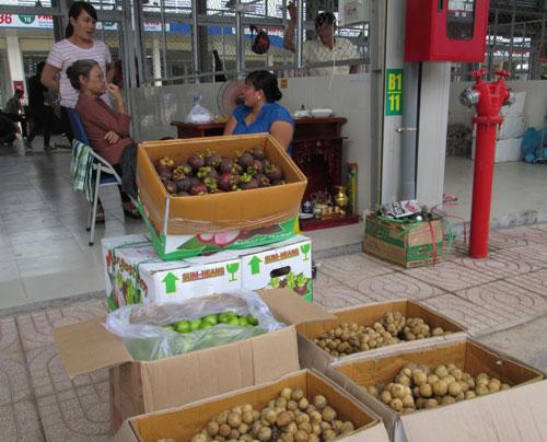 Xuất hộ trái cây cho Thái Lan!