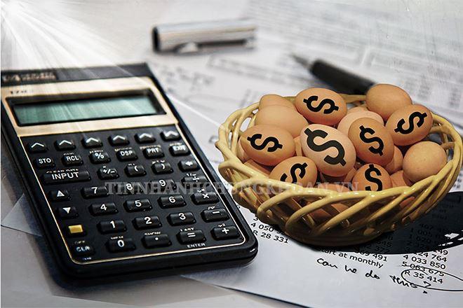 Big_Trends: Các cổ phiếu midcap, penny bị lãng quên có thể là cơ hội đầu tư không tồi