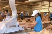 'Ngành gỗ Việt Nam chưa có gì đặc biệt, tăng trưởng toàn nhờ doanh nghiệp FDI?'