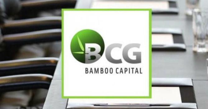 CTCP Bamboo Capital bị phạt 50 triệu đồng