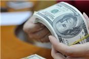 Tỷ giá ngoại tệ 26/6: Bất ngờ đảo chiều, USD tăng nhẹ