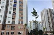 Đề xuất 'sốc' đối với nhà cho người thu nhập thấp