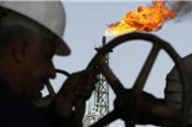 OPEC không có ý định tăng sản lượng, dầu thô tăng giá
