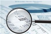 Hai kiểm toán viên bị đình chỉ do vi phạm trong việc kiểm toán báo cáo tài chính của Địa ốc First Real