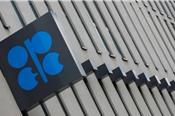Lo ngại giá dầu giảm sâu, OPEC+ tính giảm sản lượng nhiều hơn