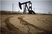Giá dầu đạt ngưỡng cao nhất trong vòng 2,5 năm