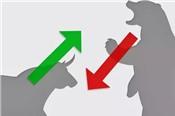 Nhận định thị trường ngày 23/5: 'Điều chỉnh về vùng 975-980 điểm'