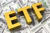 BSC: BMP có thể lọt vào danh mục của FTSE, V.N.M ETF sẽ gọi tên SHB
