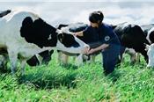 Vinamilk nâng tiếp sở hữu tại GTNfoods lên trên 40% vốn
