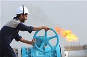 Giá dầu Brent tăng hơn 1% tuần qua