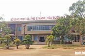 Đắk Lắk 'khai tử' sàn giao dịch cà phê Buôn Ma Thuột