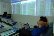 Bất thường việc phát hành cổ phiếu tại DGT