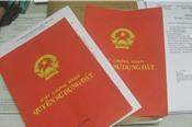 """Bộ Tài nguyên và Môi trường nói gì về quy định ghi tên cả gia đình trong """"sổ đỏ""""?"""