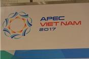 Chống xói mòn cơ sở thuế được đặc biệt quan tâm tại Hội nghị Bộ trưởng Tài chính APEC
