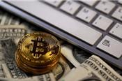 Hai nhà đầu tư Bitcoin bị cáo buộc lừa đảo
