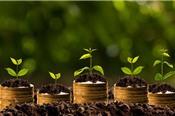 Agriseco lỗ quý 4, cả năm 2017 lãi 62,5 tỷ đồng