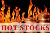 Một cổ phiếu tăng 206% trong 2 tuần