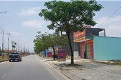 Đà Nẵng xử lý vụ cấp chứng chỉ môi giới bất động sản giá rẻ