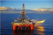 PVS ước vượt 77% kế hoạch lãi năm, sẽ huy động 1.200 tỷ cho dự án Cá Rồng Đỏ