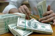 USD tự do trở lại mức 23.300 đồng