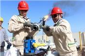 Căng thẳng Arab Saudi cân bằng triển vọng nguồn cung, giá dầu tăng nhẹ
