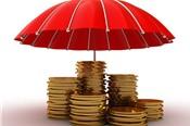 Bảo hiểm tiền gửi sẽ tham gia sâu hơn tái cơ cấu quỹ tín dụng nhân dân