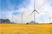 Ninh Thuận xây dựng nhà máy điện gió thứ 4