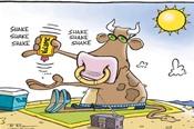 Cổ phiếu ngân hàng 'lên tiếng', VN-Index tăng gần 14 điểm