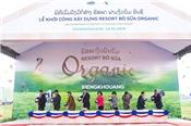 Vinamilk liên doanh khởi công trang trại bò sữa organic 5.000 ha tại Lào