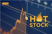Một cổ phiếu tăng 246% trong 7 phiên giao dịch