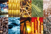 Thị trường hàng hóa 16/11: Nhóm dầu khí, vàng tiếp đà tăng