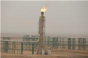 Khi nào nhu cầu dầu thô đạt đỉnh?