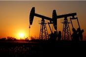 Trump - Tập sắp gặp trực tiếp, giá dầu tăng hơn 2%