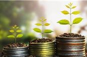 Hai nhà đầu tư nhận chuyển quyền sở hữu 30 triệu cổ phiếu TCB trị giá 3.600 tỷ đồng