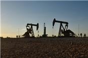Nga: Giá dầu sẽ loanh quanh 50 USD về dài hạn
