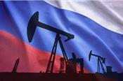 Nga sẽ chỉ giảm 50.000 – 60.000 thùng dầu/ngày trong tháng 1/2019