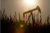 Iran: Trump không thể kéo giá dầu giảm bằng việc bắt nạt