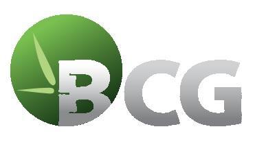 BCG: Góp bổ sung 10 tỷ tăng vốn cho Công ty con