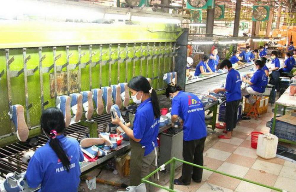 Giày Thượng Đình có thể lỗ thêm 12 tỷ đồng năm 2019 nếu hạch toán theo kiểm toán