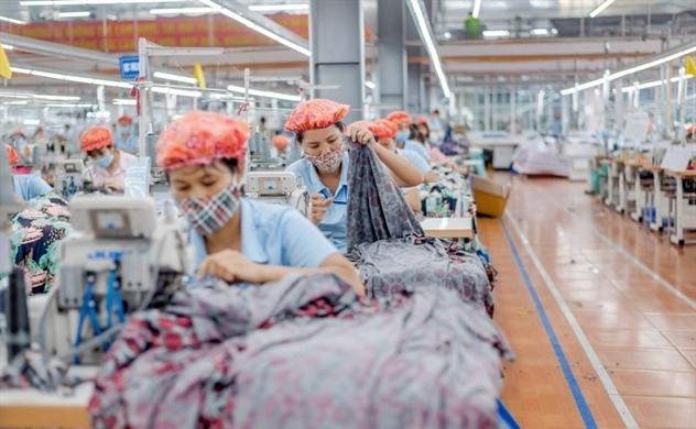 MSH: Dự chi cổ tức đến 45% cho năm 2019, lên kế hoạch di dời nhà máy