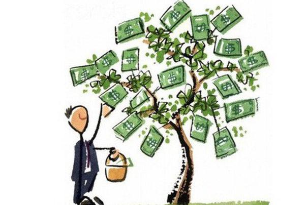 SC5 dự kiến trả cổ tức năm 2018 bằng tiền mặt với tỷ lệ 20%